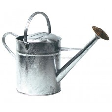 10  L Galvanised Watering Can
