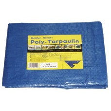 Polypropylene Tarpaulin Sheet, size options